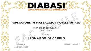 Diploma Biennale Professionale